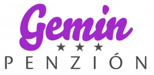 gemin_logo